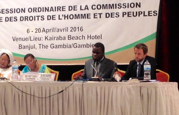 REDRESS joins NGOs and litigants for African Commission session