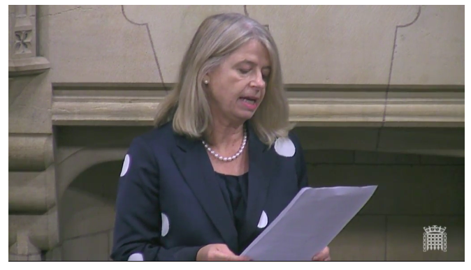 Parliamentary Debate Highlights Importance of UK's Support for Sudan's Democratic Transition