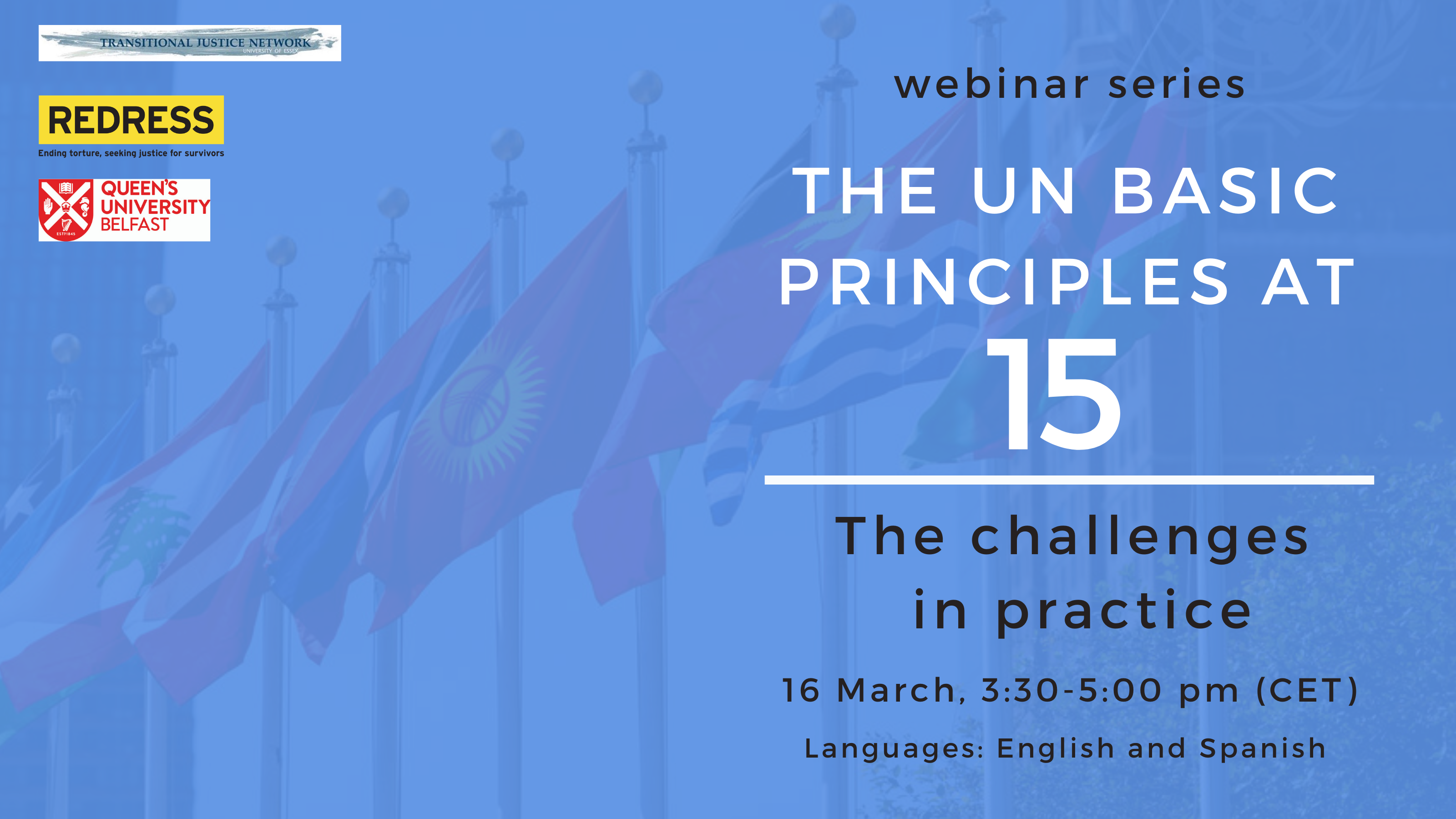 Webinar: The UN Basic Principles at 15: The Challenges in Practice