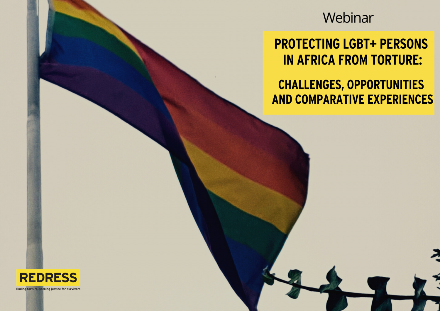 Flyer of the webinar Protecting LGBT+ Persons in Africa from Torture